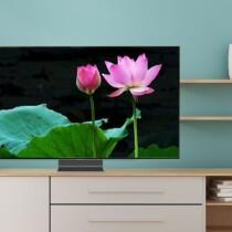 Smart Tivi QLED Samsung QA55Q95T 55 inch 4K